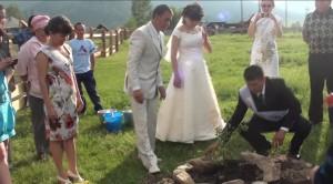 """Молодые сажают дерево в аллее """"Молодоженов"""" в с. Беш-Озек Шебалинского района"""